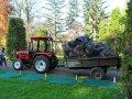 Curățenie generală în Grădina Botanică